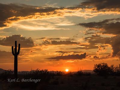 Sunset-8290240