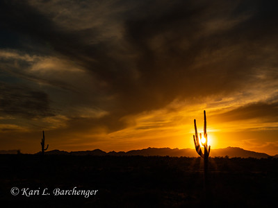 Sunset-300031