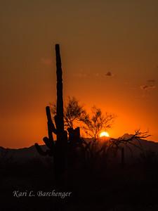 Sunset-8230054
