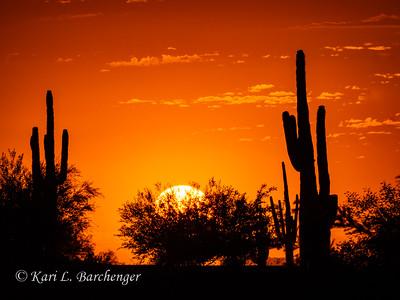 Sunset-010082