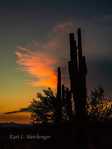 Sunset-8230096