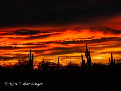 Sunset-310083