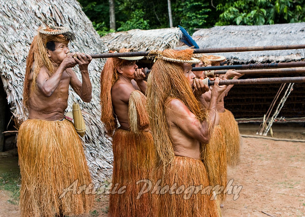 Yagua Indians blowing darts