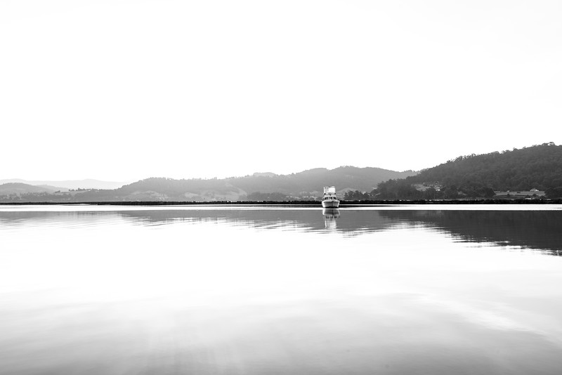 Somewhere on the Huon…   16 Jan 2018  © Fiona Gumboots  - All images are copyright and not to be pinched (that means stolen) or altered in any way (that means don't edit them or change their colours and stuff) or used for advertising or promoting any of your stuff or other peoples stuff (unless you purchase an image license off me)  http://thegumbootchronicles.com/ for more photos and links to purchasing photos and other stuffs….
