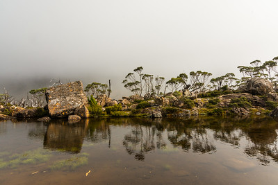 Spent the day walking the Tarn Shelf circuit today. Went up via Twilight Tarn and Lake Webster and then along the shelf and back down. Frickin love this place so much. Like heaps much...  © Fiona Gumboots   Prints and canvases can be purchased at http://thegumbootchronicles.com/photography/  All images are copyright and not to be reproduced, distributed, published, altered, manipulated or used without my permission.  Sharing via the 'share' button on facebook is more than welcome.