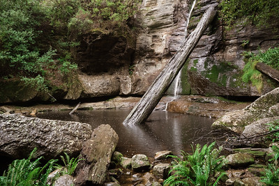 Gotta get back here one day when it isn't raining and take some proper snaps. I don't understand why I have never been here before...  Snug Falls 7 May 2017  © Fiona Gumboots   Prints and canvases can be purchased at http://thegumbootchronicles.com/photography/  All images are copyright and not to be reproduced, distributed, published, altered, manipulated or used without my permission.  Sharing via the 'share' button on facebook is more than welcome.
