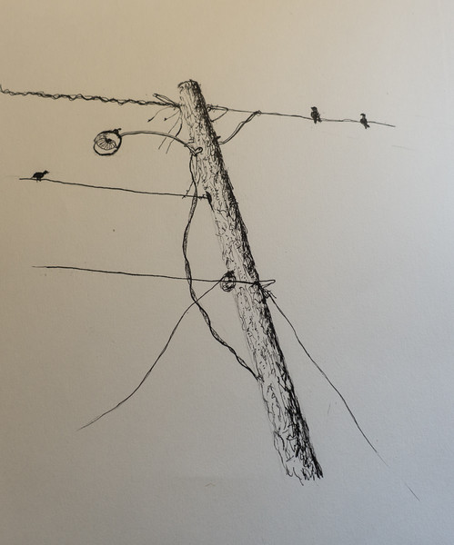 Pole (one of many)