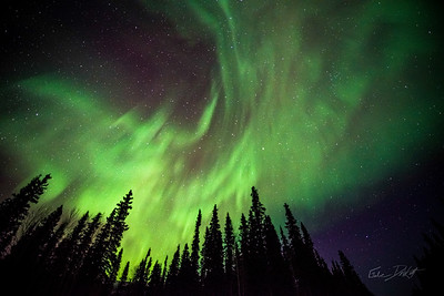 Gabe_Alaska_Aurora_Borealis_March2013-_DSC4528