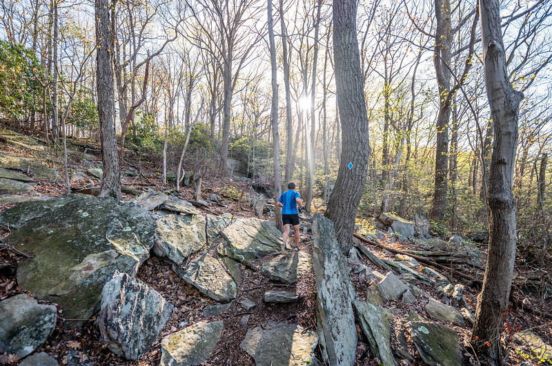Coopers-Rock-50k-Half-Marathon-Race-WV-2019-368