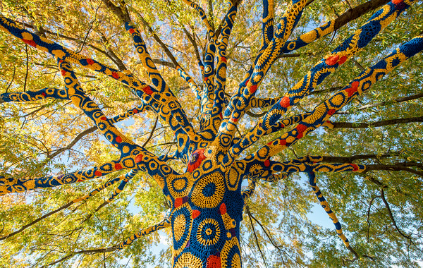 Blue-&-Gold-Quilted-Tree- WVU-Morgantown-WV-3-Edit