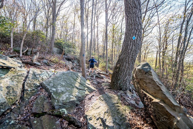 Coopers-Rock-50k-Half-Marathon-Race-WV-2019-412