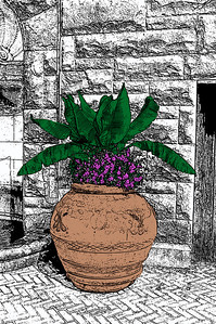 Biltmore Clay Pot