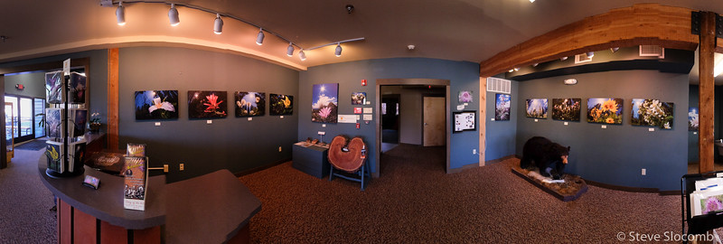 Montana Natural History Center show November 2016