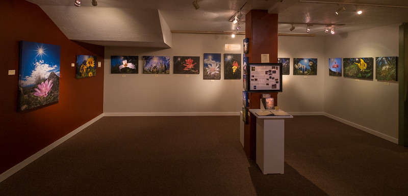 Artist's Shop exhibit in Missoula May 2015