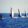 Windsurfers in row