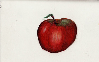 Study of an apple