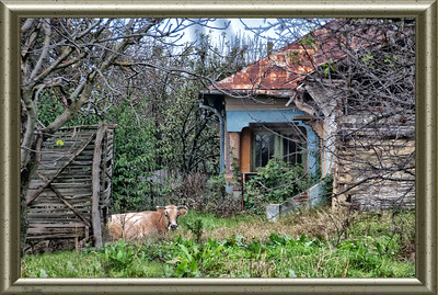 Country Living - Craiova, Romania