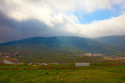 Spring on Golan and Galilee Heights