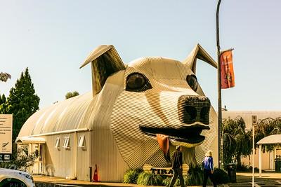 Corrugated Iron Dog Building Tirau NZ