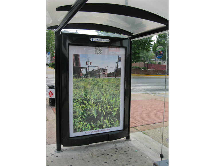 """From the collection titled """"Uncultivated"""" by Lynn Cazabon, shelter, St Paul"""