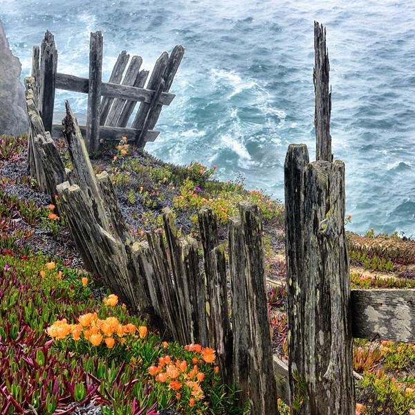 Foggy Fence II DSC_5349 -