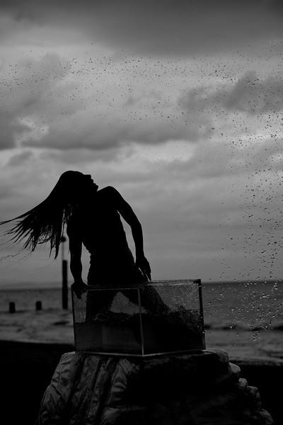 Silhoutte mermaid