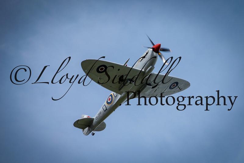 Spitfire (5 of 7)
