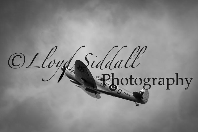 Spitfire (4 of 7)