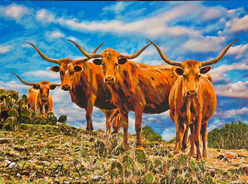 TexasProud2