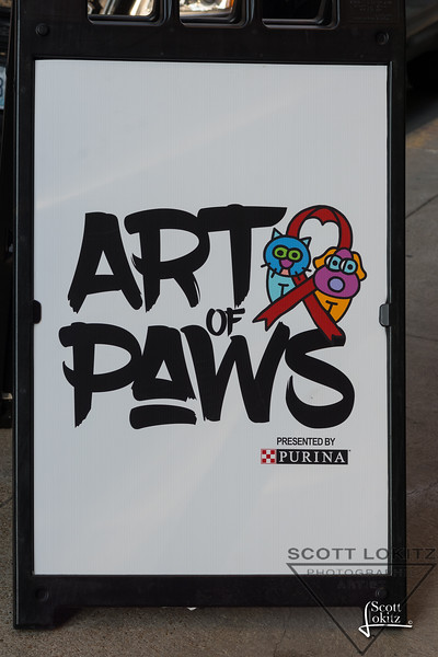 Art of PAWS-1-2
