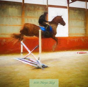 Carousel Horse Dreams _MShoop_2017