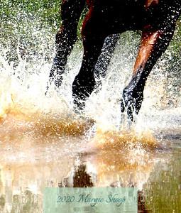 Water Meets Momentum_MShoop_2011