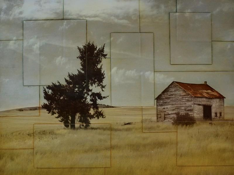 Fields of Gold-Pezhman, 24x33 photography