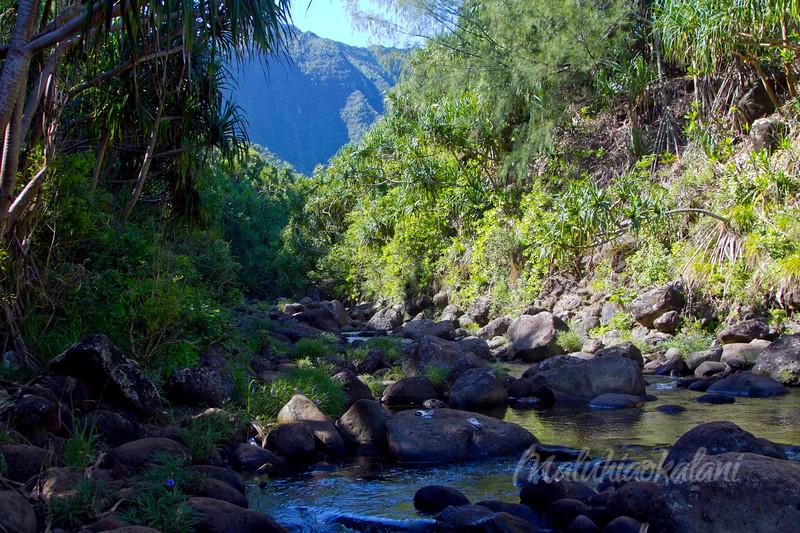 Hanakapiʻai River