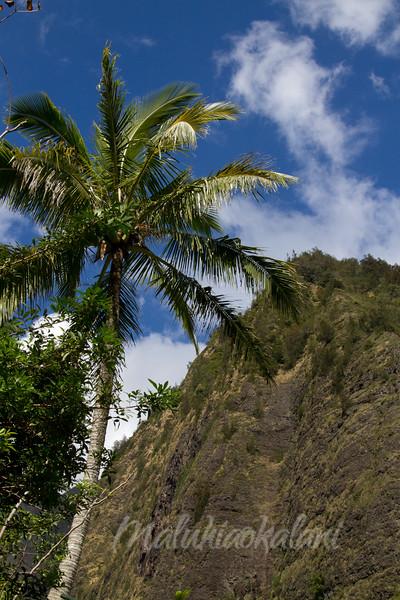 ʻIao Needle