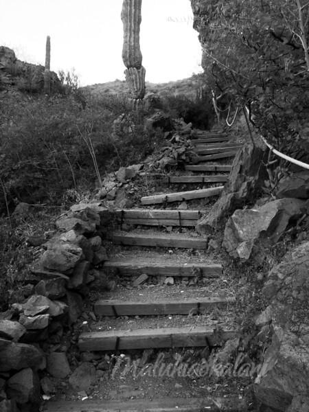 Up Hill Battle