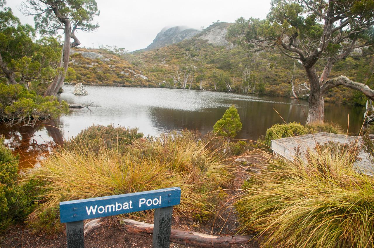 ...načež jsem minul Vombatí bazének...