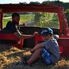 Farm - Original