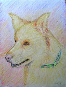Nina, 8 25x11, color pencil, aug 23, 2014 Cimg0210ss