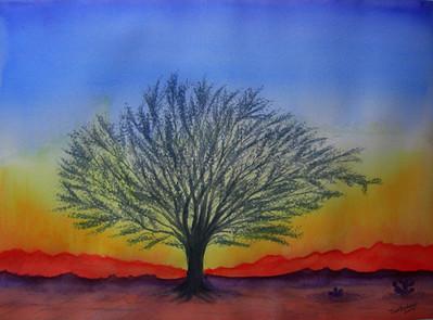 Mesquite Sunset, watercolor, 10x14, jan 31, 2014 CIMG9333