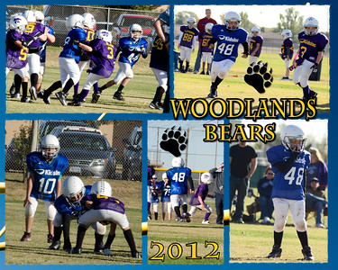 Will-Collage-Woodlands-Bears-2012-000-Page-1