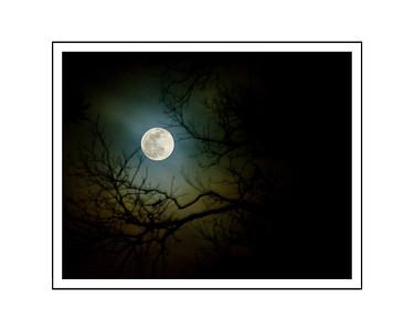 New Years Moon 16x20