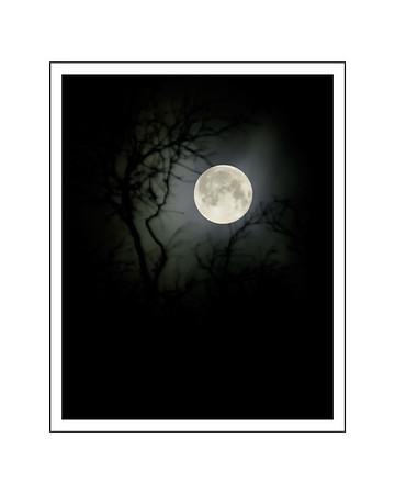 New Years Moon 2018 edit 16x20