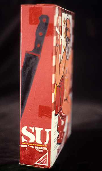 """Strict Deit of Ideas Changes Life (right side view). Oil paint on cardboard cereal box, 10"""" x 3"""" x 8"""" 1986."""
