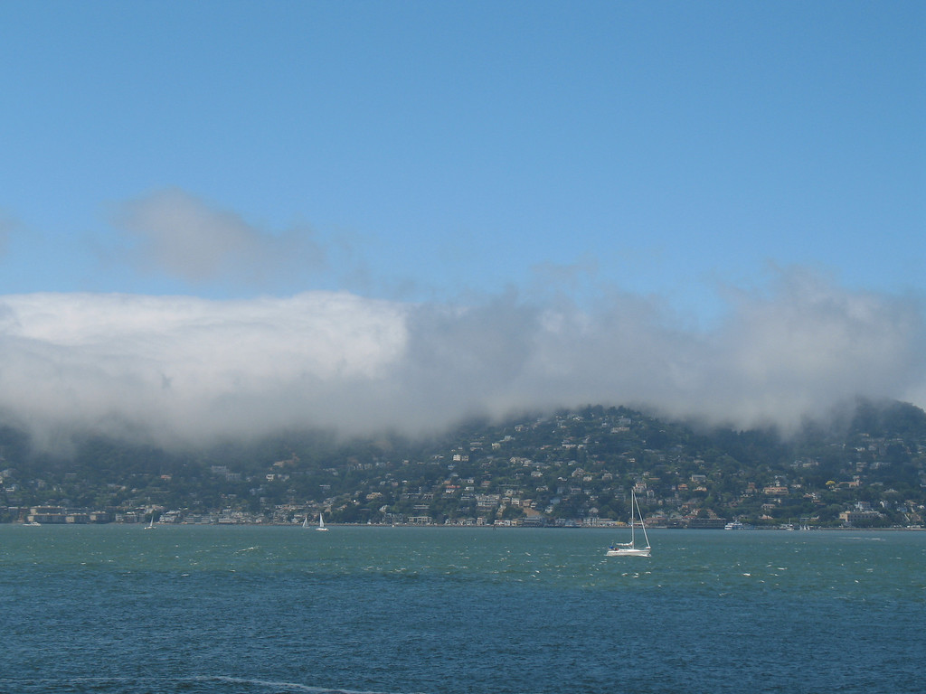 Marin County, CA.  July 3, 2006. Image Copyright 2006 by DJB.  All Rights Reserved.