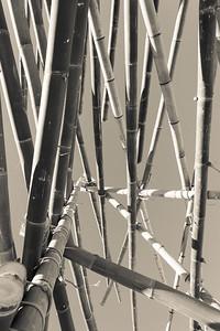 "Alternate Processing: ""Creamtone"" - De oogst (The Harvest), Georges Cuvillier - Swell Sculpture Festival 2013, Visit 1; Currumbin, Gold Coast, Queensland, Australia; 18 September 2013. Photos by Des Thureson"