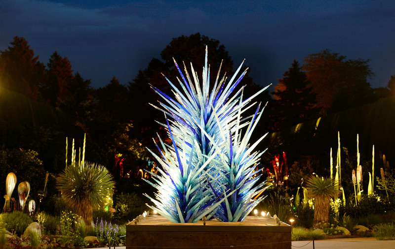 """. The Denver Botanic Gardens is hosting a giant show of the glass sculptures by artist Dale Chihuly. One of the best times to the see the art is in the twilight hours. Chihuly\'s work \""""Blue Icicle Towers\"""" greets visitors at the main entrance to the gardens. It was photographed on Tuesday, June 10, 2014. (Denver Post Photo by Cyrus McCrimmon)"""