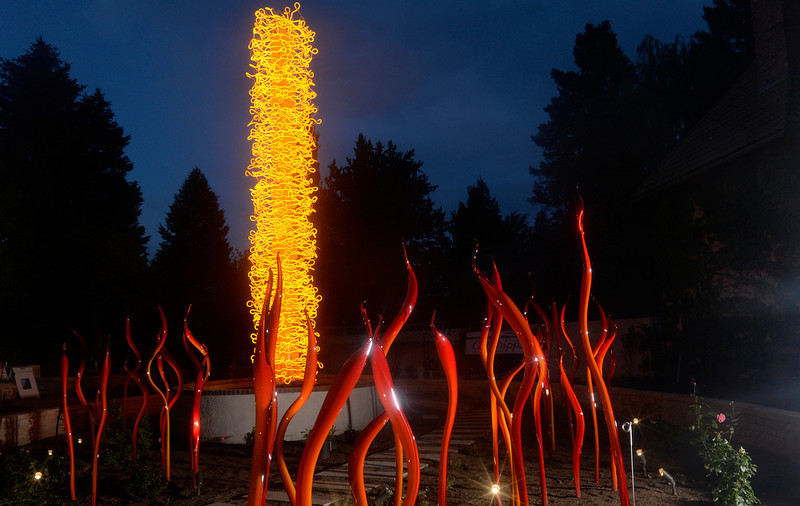 """. The Denver Botanic Gardens is hosting a giant show of the glass sculptures by artist Dale Chihuly. One of the best times to the see the art is in the twilight hours. Chihuly\'s  work \""""The Saffron Tower & Cattails\"""" was photographed on Tuesday, June 10, 2014. (Denver Post Photo by Cyrus McCrimmon)"""