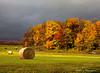 2014 Autumn :