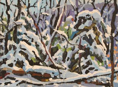 24-Winter study
